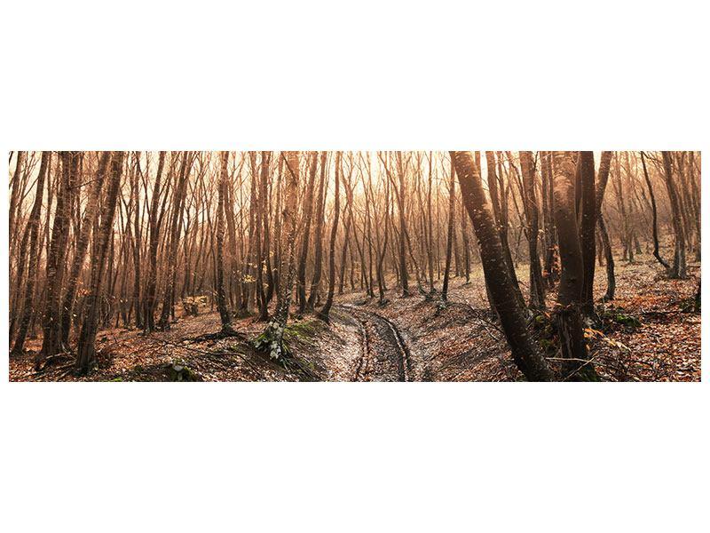 Hartschaumbild Panorama Der kahle Wald