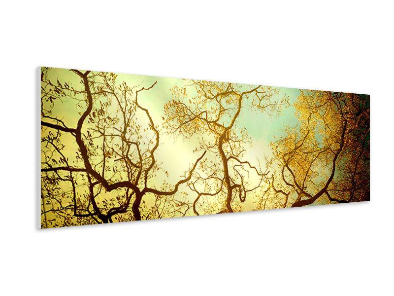 Hartschaumbild Panorama Bäume im Herbst