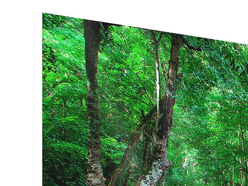 Hartschaumbild Panorama Am Fusse von Erawan