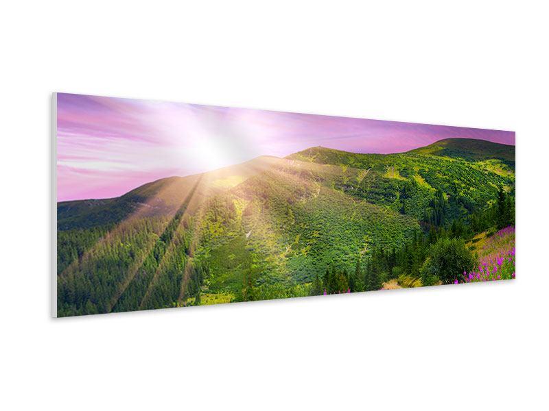 Hartschaumbild Panorama Eine Sommerlandschaft bei Sonnenaufgang