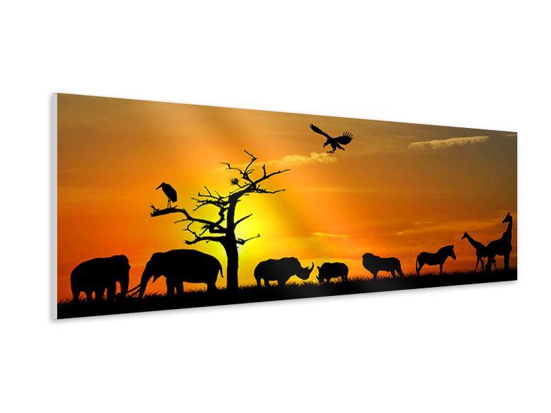Hartschaumbild Panorama Safarietiere bei Sonnenuntergang