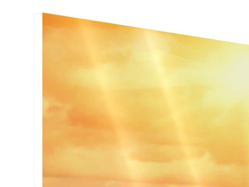 Hartschaumbild Panorama Goldenes Licht für Sonnenblumen