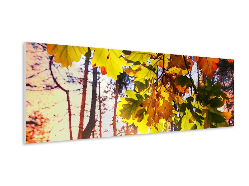 Hartschaumbild Panorama Herbst