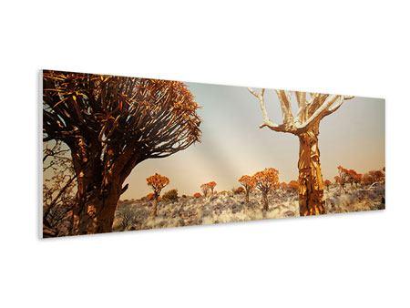 Hartschaumbild Panorama Afrikanische Landschaft