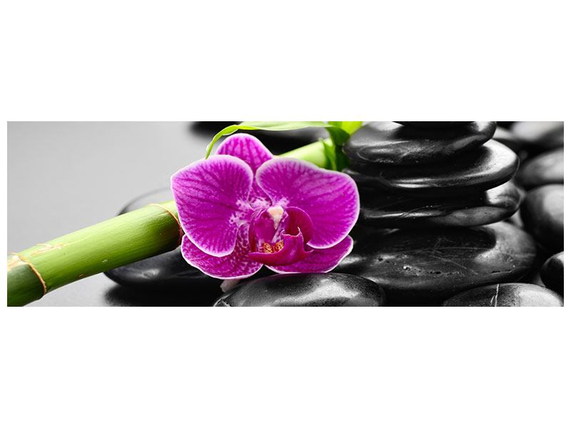 Hartschaumbild Panorama Feng-Shui-Orchidee