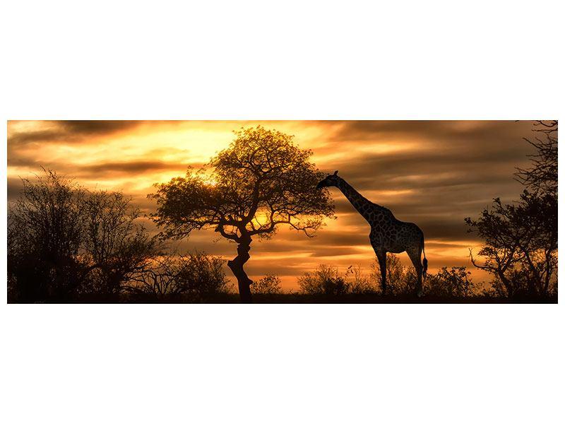 Hartschaumbild Panorama African Dreams