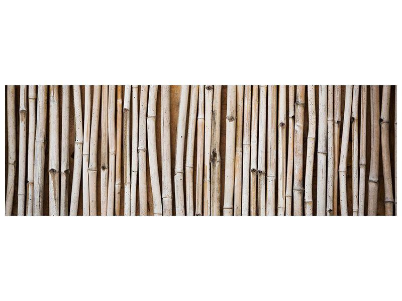 Hartschaumbild Panorama Getrocknete Bambusrohre
