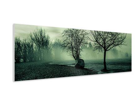 Hartschaumbild Panorama Der Auwald im Nebel