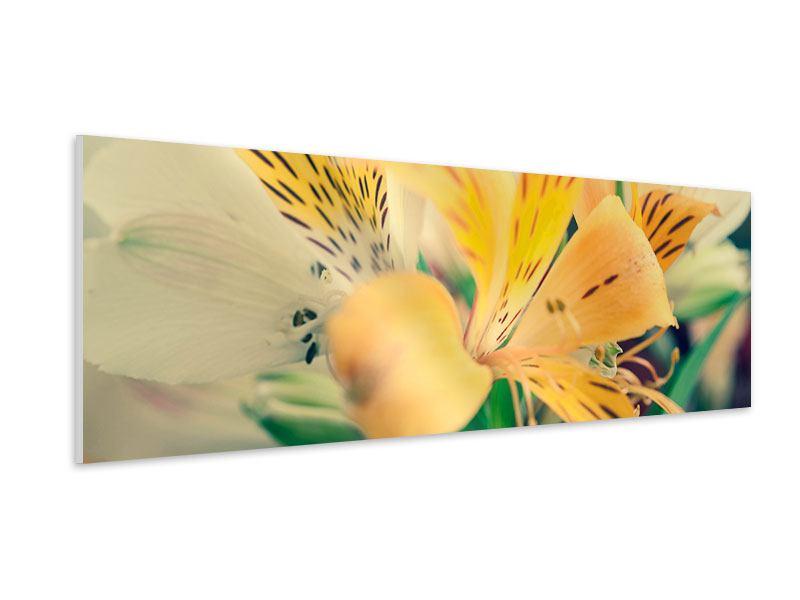 Hartschaumbild Panorama Tigerlilien