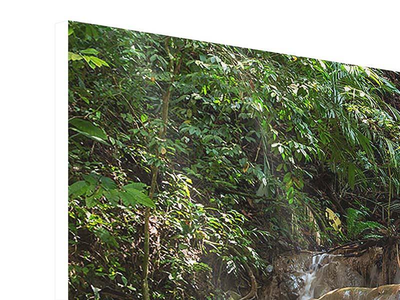 Hartschaumbild Panorama Mexikanischer Wasserfall