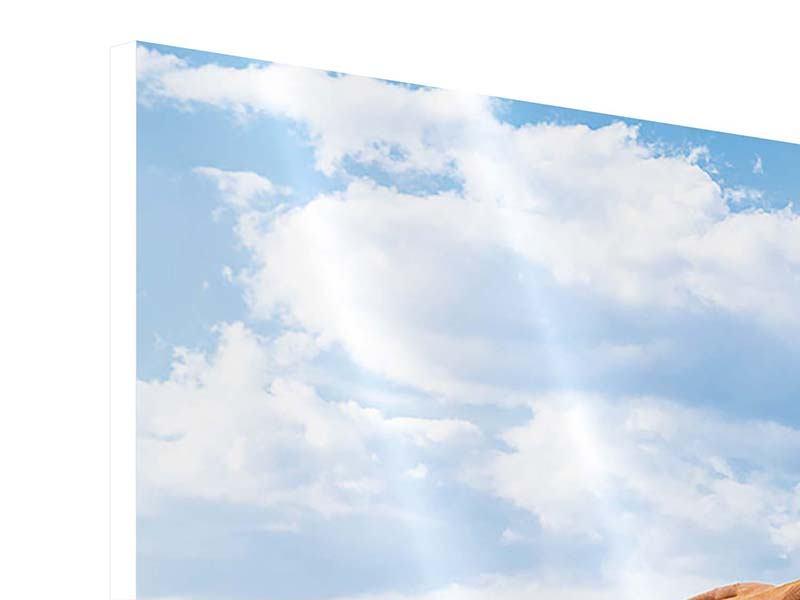 Hartschaumbild Panorama Auf der Alm