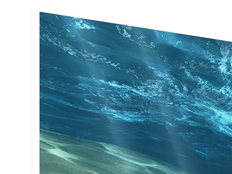 Hartschaumbild Panorama Unter dem Wasser