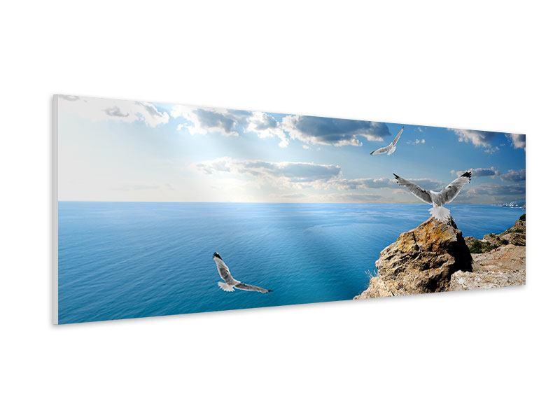 Hartschaumbild Panorama Die Möwen und das Meer