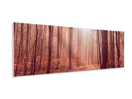 Hartschaumbild Panorama Sonnenuntergang im Herbstwald