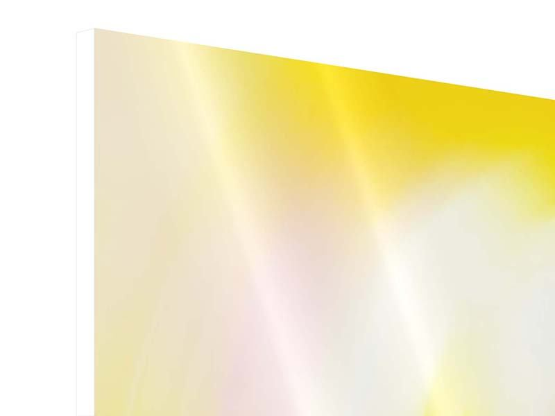Hartschaumbild Panorama Abstrakte Farbkreise