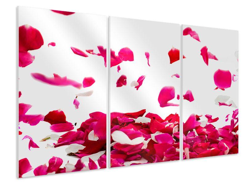 Hartschaumbild 3-teilig Für mich soll`s rote Rosen regnen