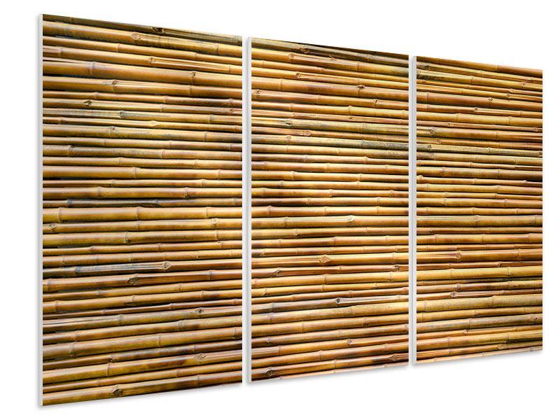Hartschaumbild 3-teilig Bambus