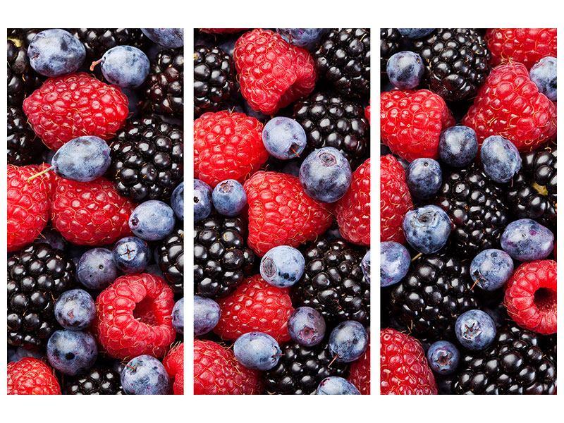 Hartschaumbild 3-teilig Beeren