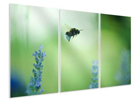 Hartschaumbild 3-teilig Die Biene