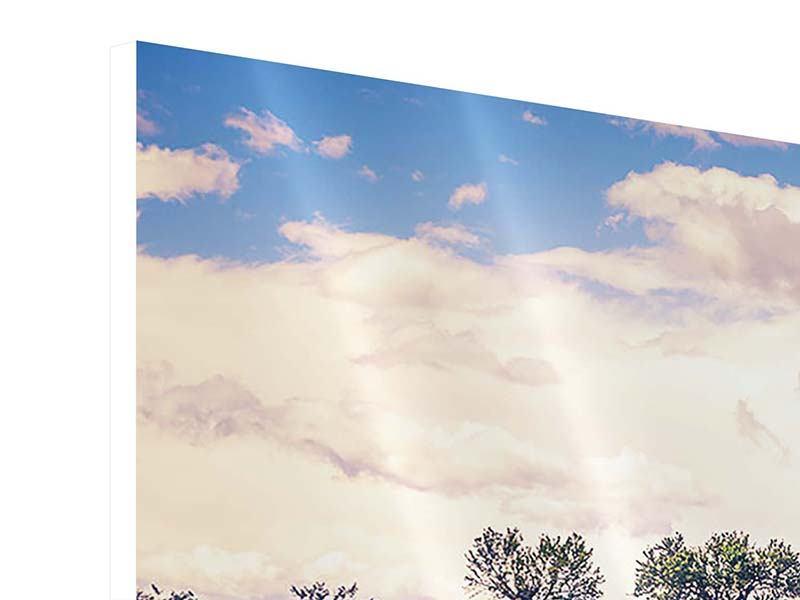 Hartschaumbild 3-teilig Das Lavendelfeld