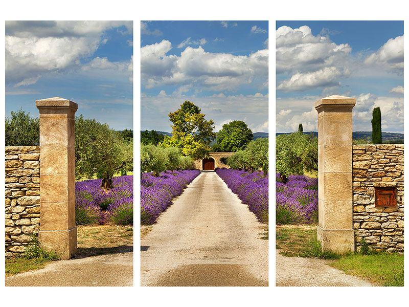Hartschaumbild 3-teilig Lavendel-Garten