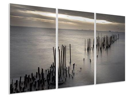 Hartschaumbild 3-teilig Das Meer und die Träne