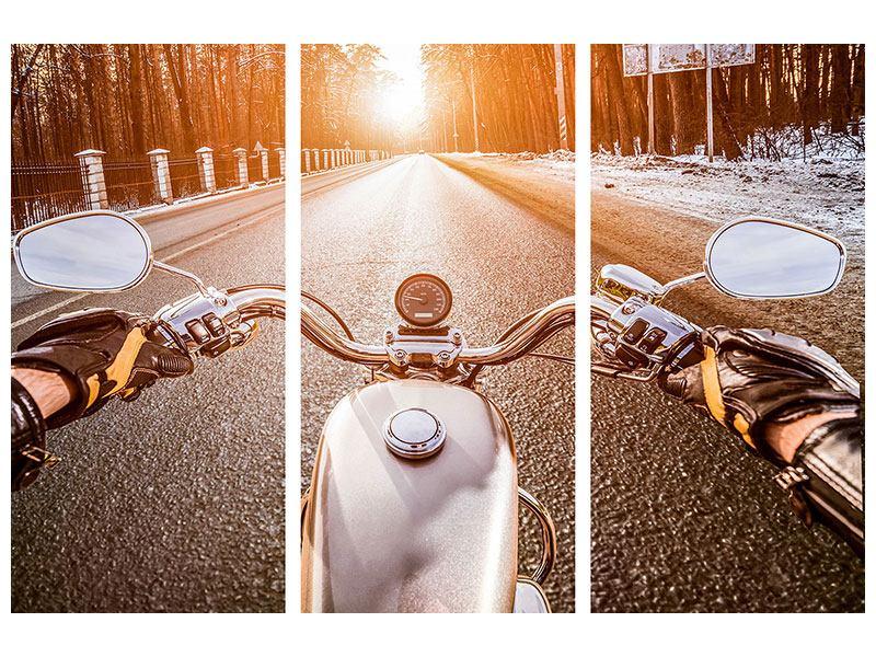Hartschaumbild 3-teilig Auf dem Motorrad
