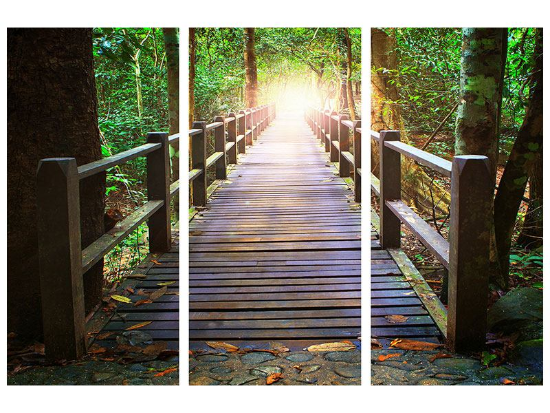 Hartschaumbild 3-teilig Die Brücke im Wald