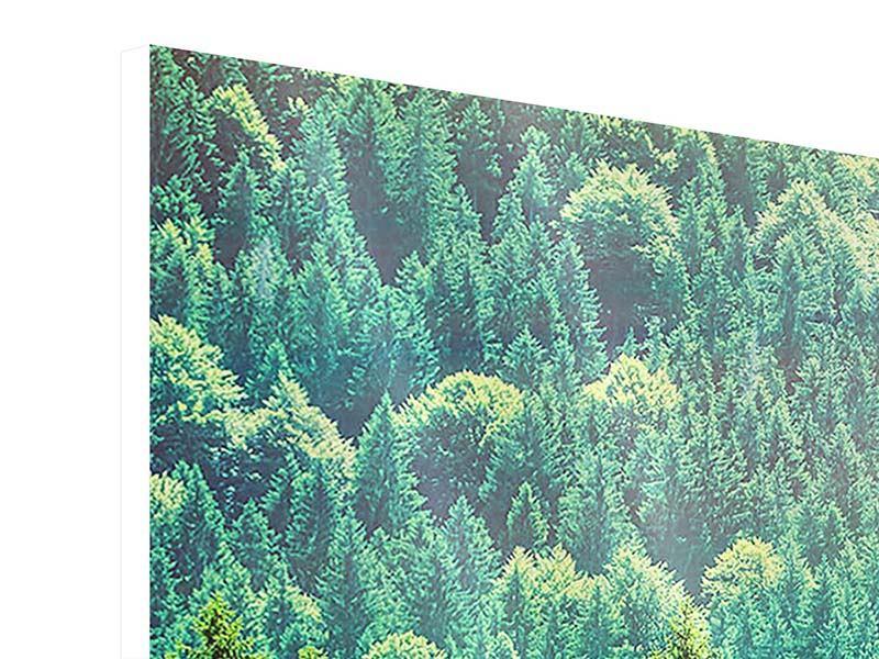 Hartschaumbild 3-teilig Der Waldhügel