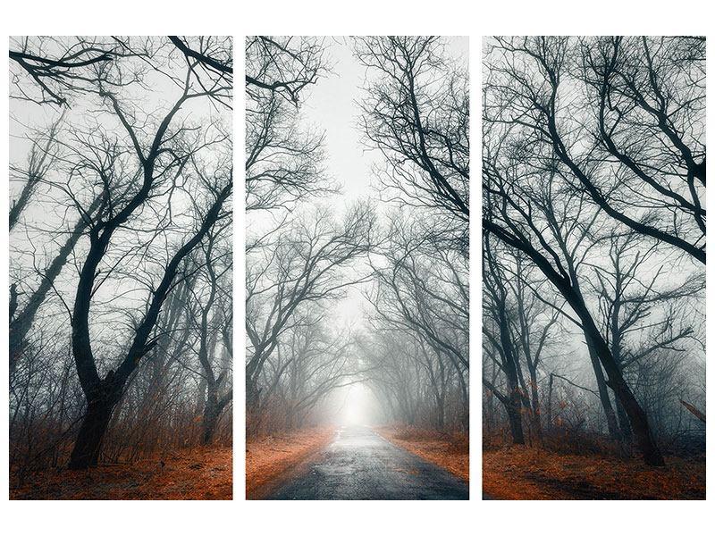 Hartschaumbild 3-teilig Mysteriöse Stimmung im Wald