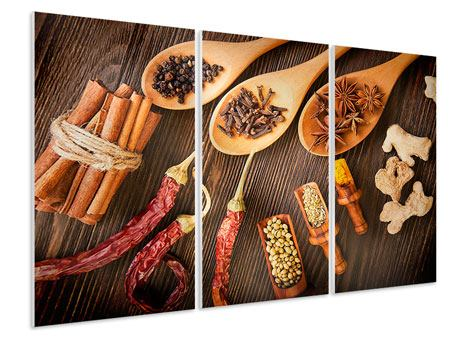 Hartschaumbild 3-teilig Orientalische Gewürze