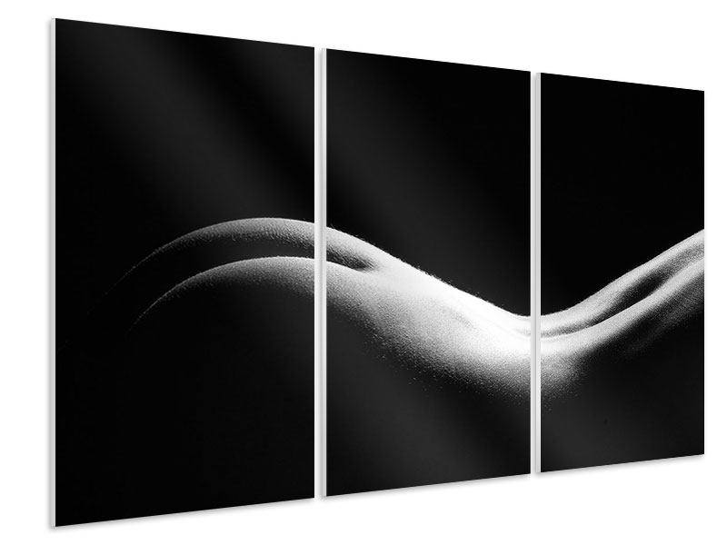 Hartschaumbild 3-teilig Nude