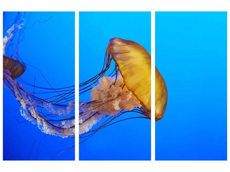 Hartschaumbild 3-teilig Medusa