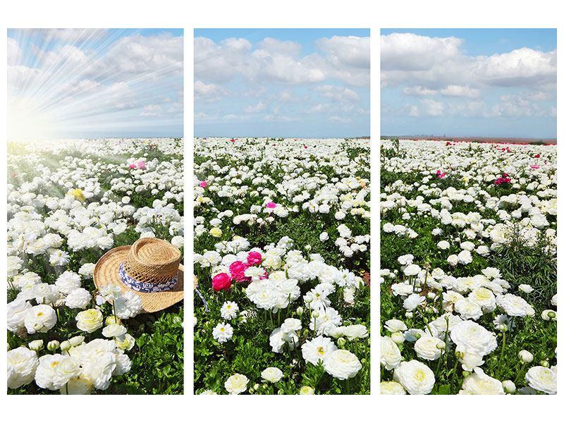 Hartschaumbild 3-teilig Die Frühlingsblumenwiese