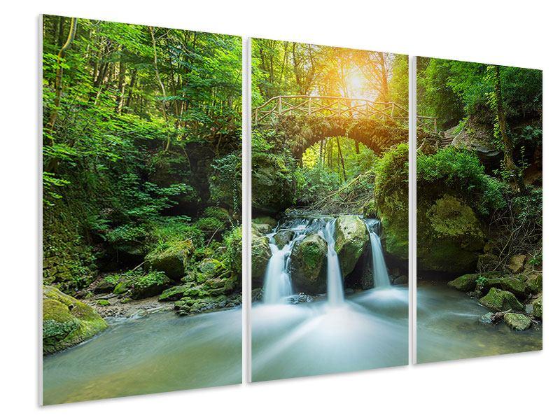 Hartschaumbild 3-teilig Wasserspiegelungen