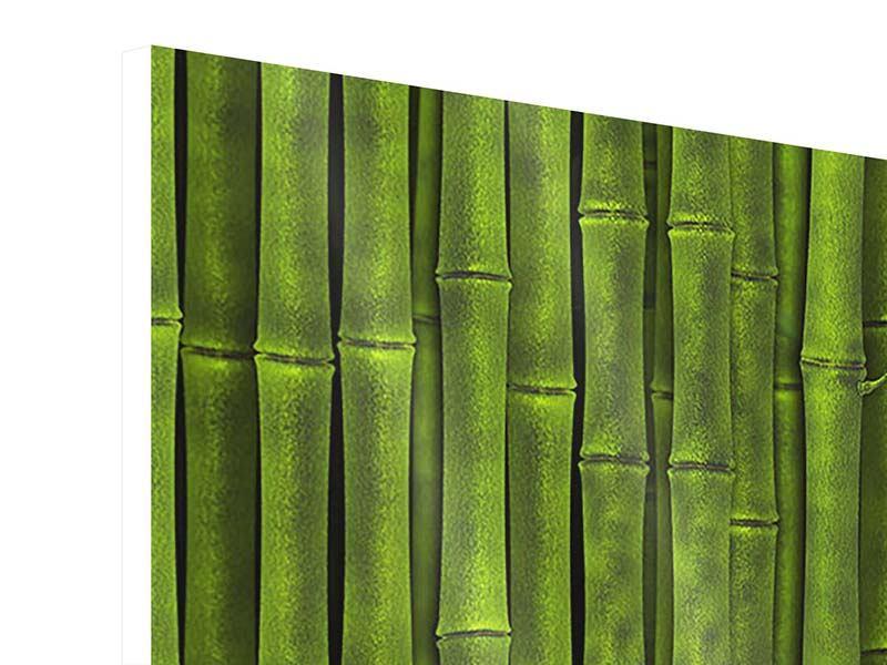 Hartschaumbild 3-teilig Wasserspiegelung Bambus