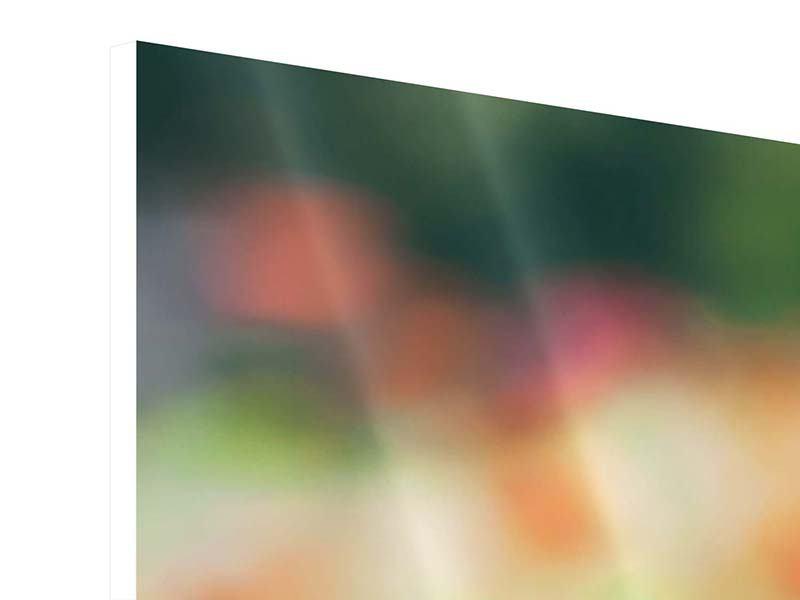 Hartschaumbild 3-teilig Im Blumengarten