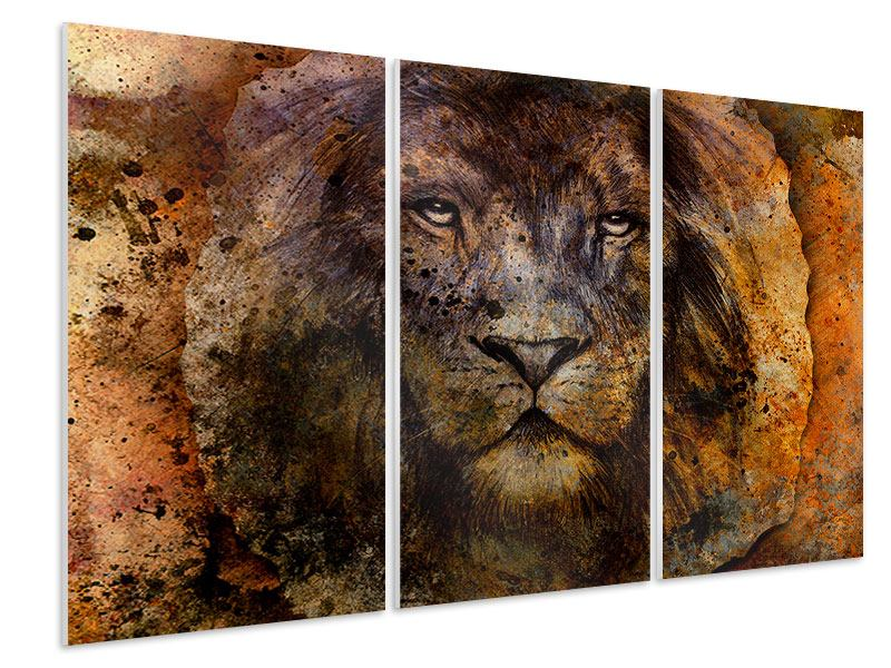 Hartschaumbild 3-teilig Portrait eines Löwen