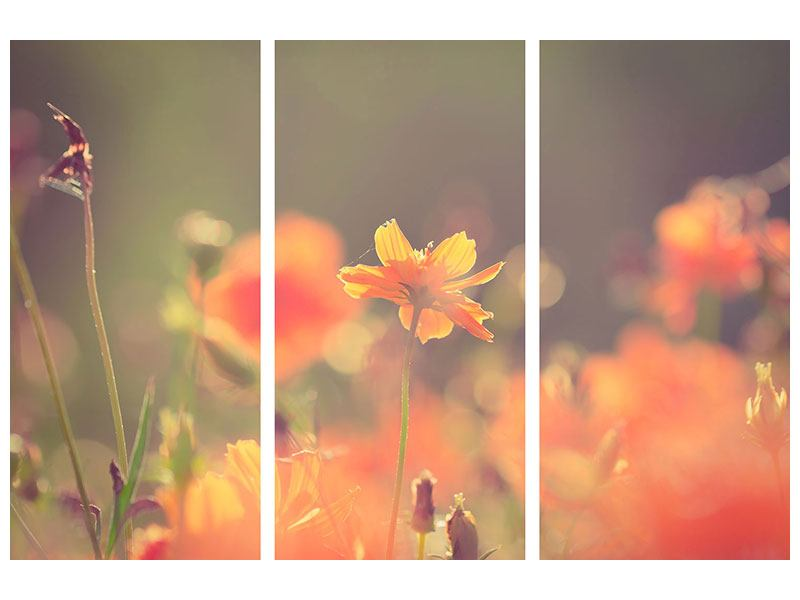 Hartschaumbild 3-teilig Blütenpracht