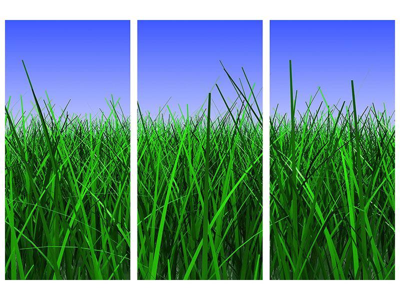 Hartschaumbild 3-teilig Im Gras