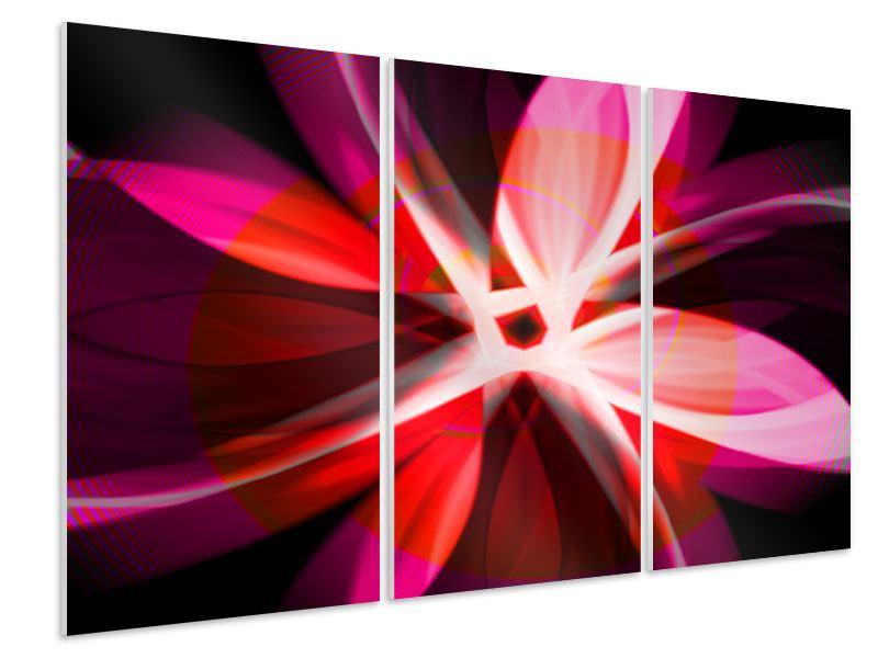 Hartschaumbild 3-teilig Abstrakt Flower Power