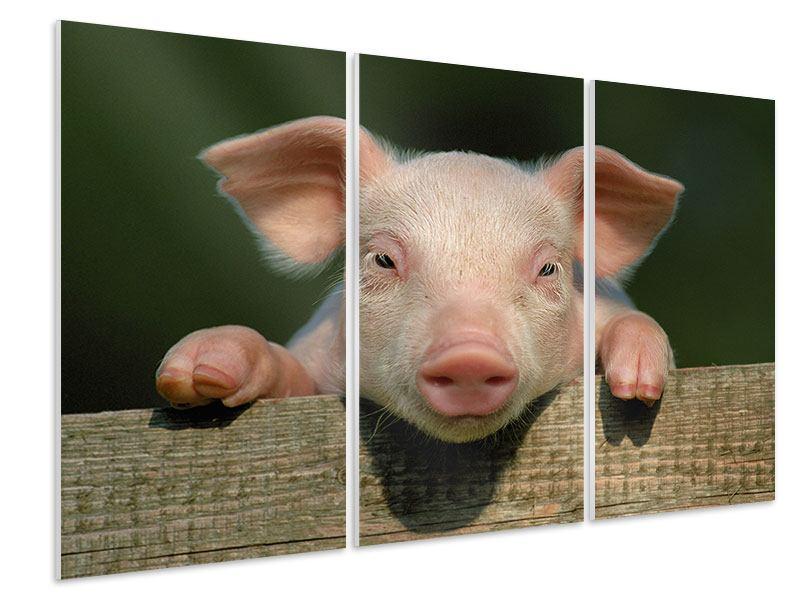 Hartschaumbild 3-teilig Schweinchen Namens Babe
