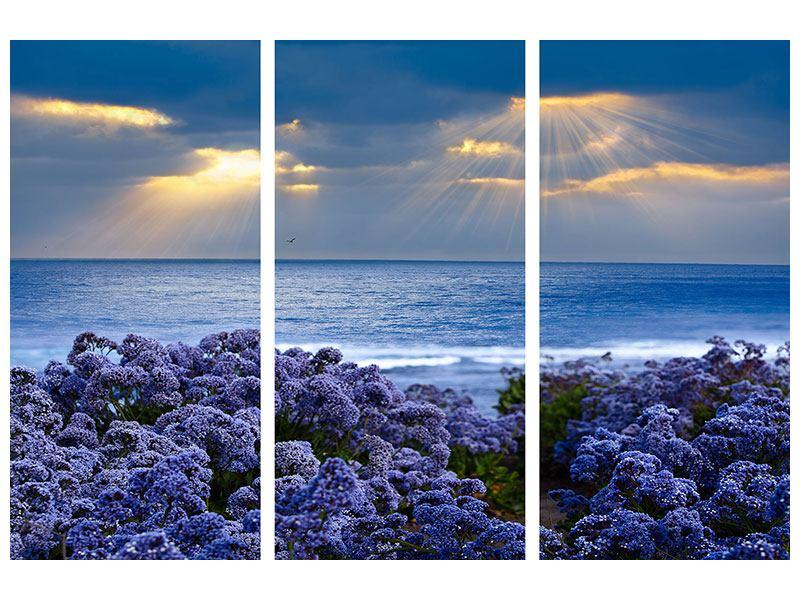 Hartschaumbild 3-teilig Der Lavendel und das Meer