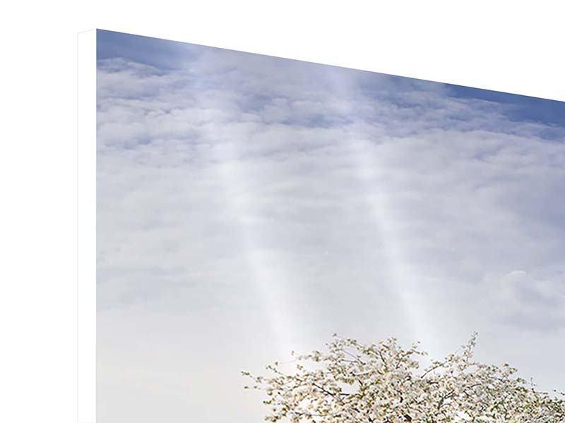 Hartschaumbild 3-teilig Apfelbaum-Garten