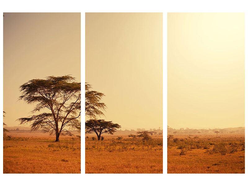 Hartschaumbild 3-teilig Weideland in Kenia