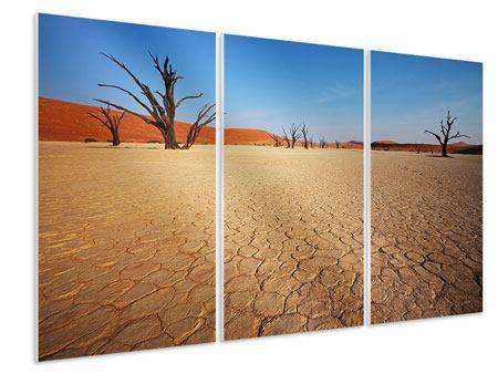 Hartschaumbild 3-teilig Wüste