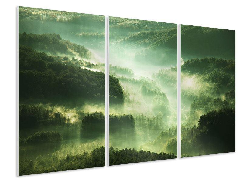 Hartschaumbild 3-teilig Über den Wäldern
