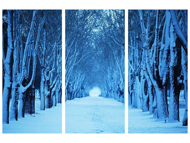 Hartschaumbild 3-teilig Winterbäume