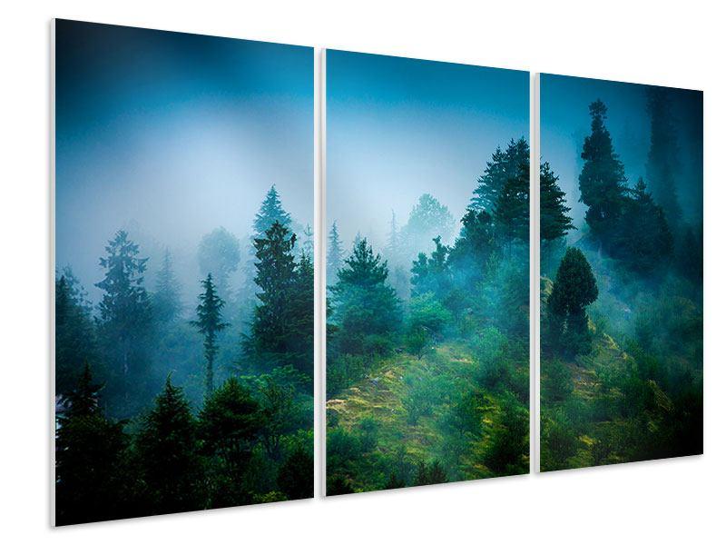Hartschaumbild 3-teilig Geheimnisvoller Wald