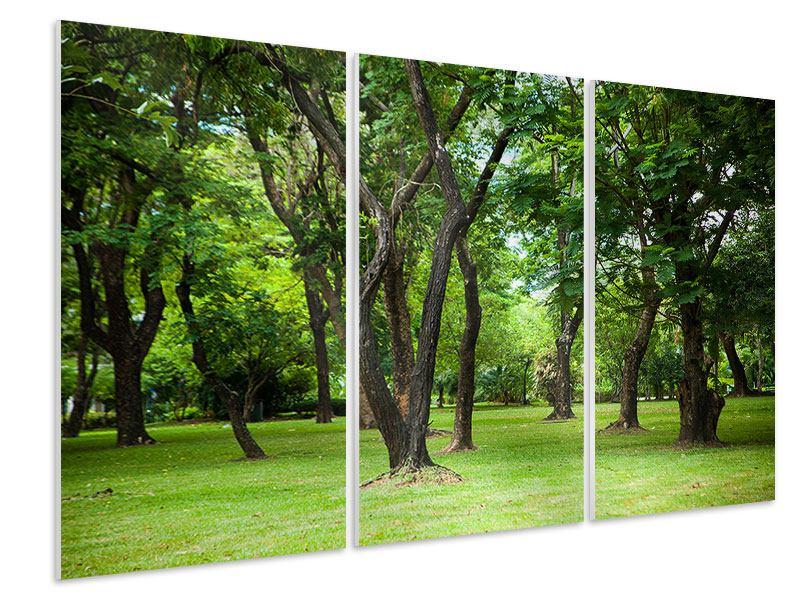 Hartschaumbild 3-teilig Kirschbaum-Garten